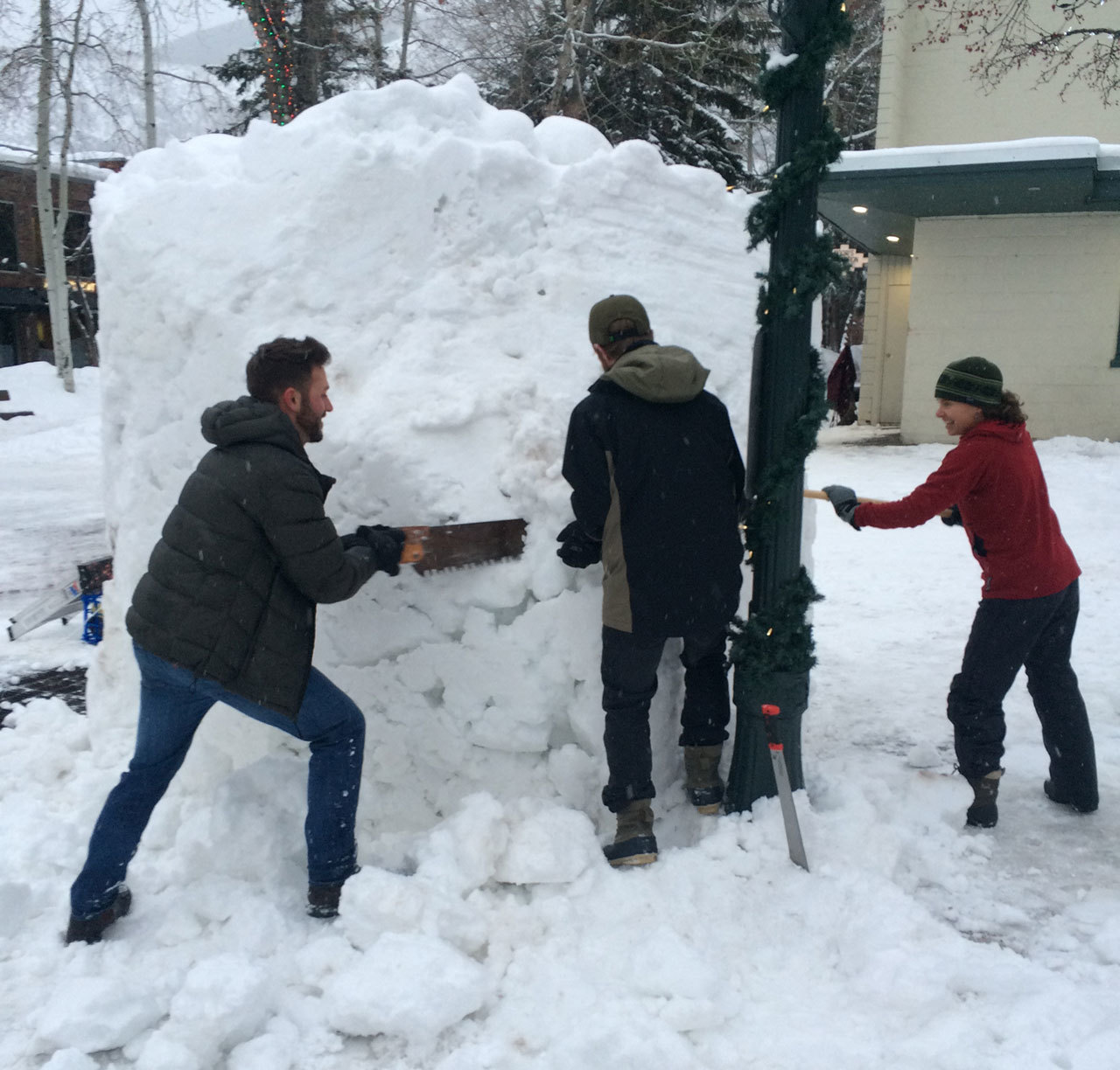 Perspective-Aspen-wintersculpt-carve.jpg#asset:811